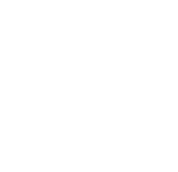 database technical support